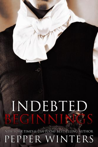 indebted beginnings ebook