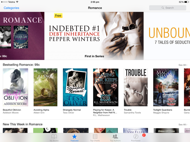 ibooks deal with debt banner
